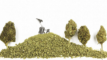 Cannabiscapes: Exploring Cannabis Culture Through Flower-Based Art
