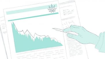 Analysts Agree: Despite Market Downturn, Cannabis Is 'A Real Opportunity For The Long Term'