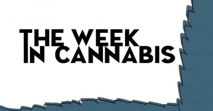 The Week In Cannabis: An Earnings Avalanche, Biden's Clemency Plans, Cuomo's Resignation And More